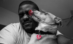 Bactéria presente na saliva dos cães mata mulher e leva homem a ser amputado