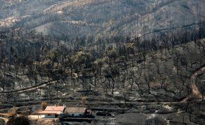 Segurança Social disponibiliza linhas de apoio às populações afetadas pelo fogo