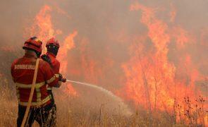 Governo decreta dispensa de trabalhadores que sejam bombeiros nos distritos em alerta