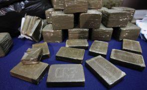 Polícia da África do Sul apreende droga no valor de 179,5 ME na fronteira com Moçambique