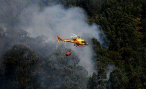 Vários concelhos e distritos do continente em risco máximo de incêndio