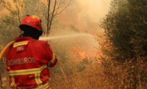 Doze concelhos de seis distritos do continente em risco máximo de incêndio