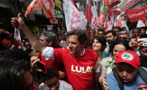 Subida de Haddad mostra polarização entre esquerda e extrema-direita no Brasil