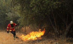 ALERTA | Risco de incêndio «muito elevado e máximo»