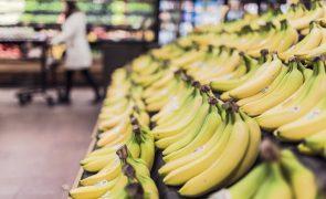 Bananas oferecidas a prisão tinham milhões de euros de droga no interior