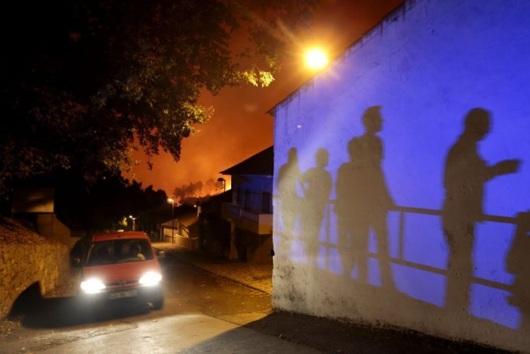 Festival CineEco com filmes sobre os fogos florestais de 2017