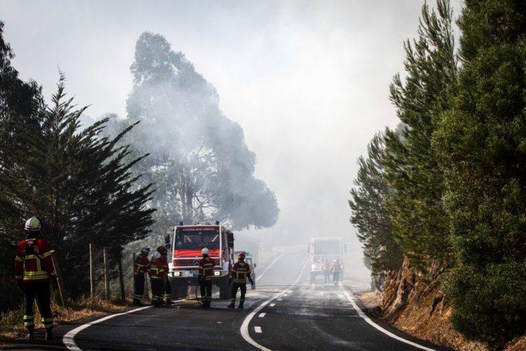 Rescaldo do incêndio prossegue e autarquia pensa já na reflorestação em Sintra-Cascais