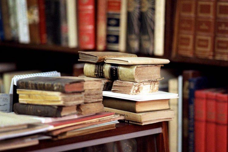 Livraria Espaço Ulmeiro fecha portas no dia 31, mas procura novo espaço