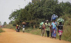 Últimos 3.000 refugiados moçambicanos no Maláui já regressaram