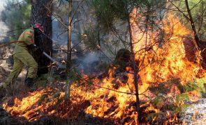 Incêndio em fábrica de Oliveira de Azeméis foi combatido por 77 bombeiros
