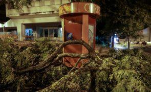 Soure decreta calamidade pública após prejuízos em 90% das habitações na sequência do furacão Leslie
