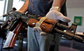Criadores do gado na Guiné-Bissau denunciam uso de armas AK-47 no roubo de animais