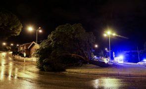 EDP diz que 94% dos consumidores afetados pelo mau tempo já tem energia elétrica