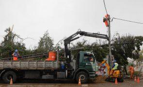 Leslie: Município em Coimbra com prejuízos superiores a sete milhões de euros devido à tempestade