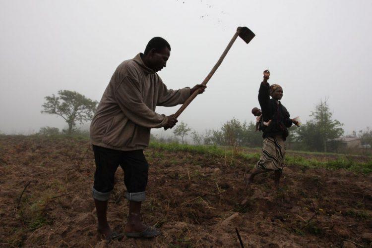Setor não petrolífero vai liderar crescimento económico em Angola até 2022