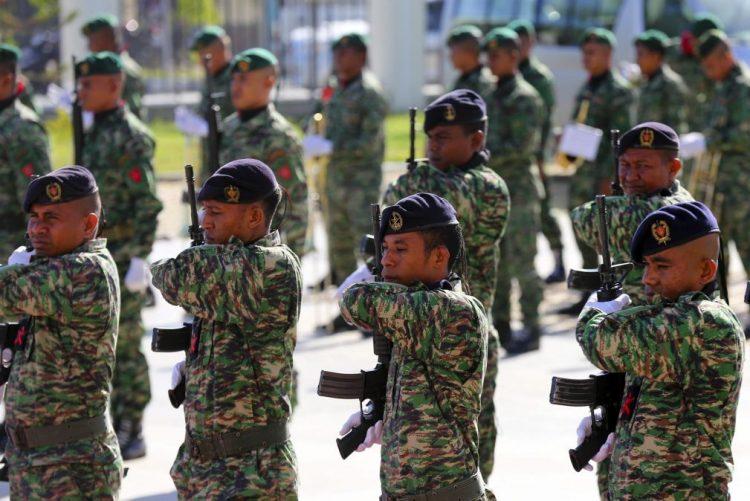 Maior desfile militar em 100 anos assinala centenário do Armistício da Grande Guerra