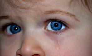 Menina de 4 anos presencia assassinato: «A minha mãe está morrida»