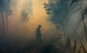 Um milhão de euros para projetos ambientais nas zonas afetadas pelos incêndios em outubro