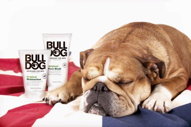 É contra a crueldade animal? Conheça marcas de cosmética que não testam em animais