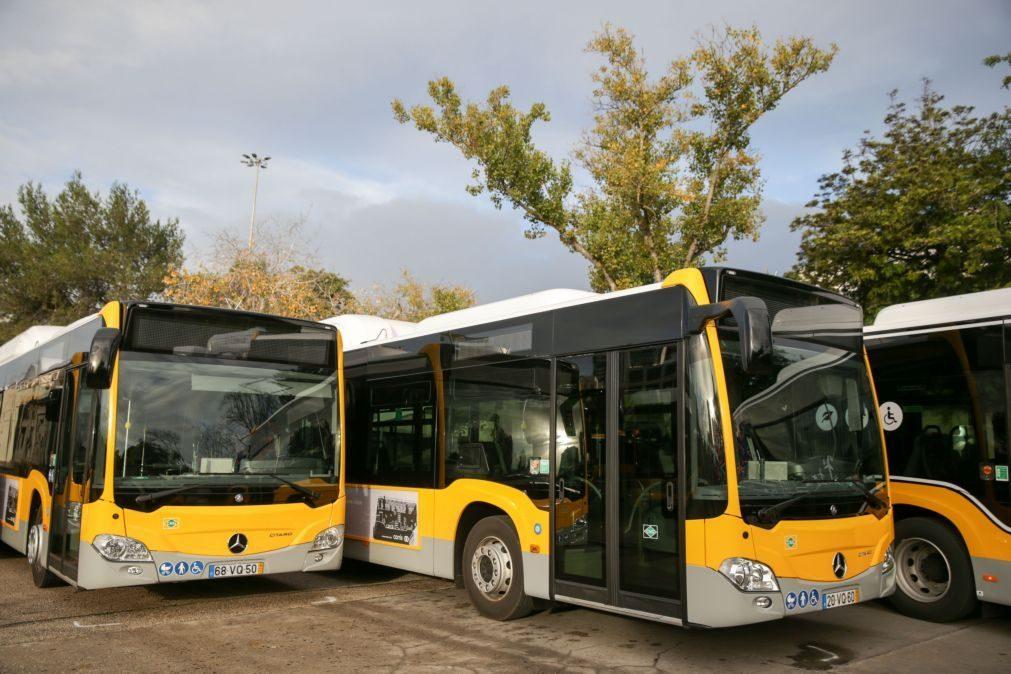 Concurso para reforço da rede de autocarros até ao fim do ano