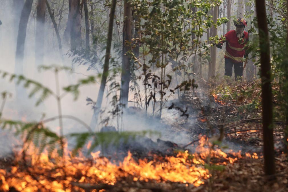 Extinto fogo que lavrava no concelho do Fundão