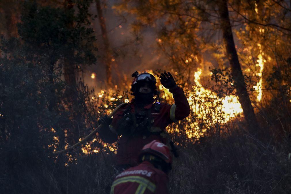Política de gestão florestal é