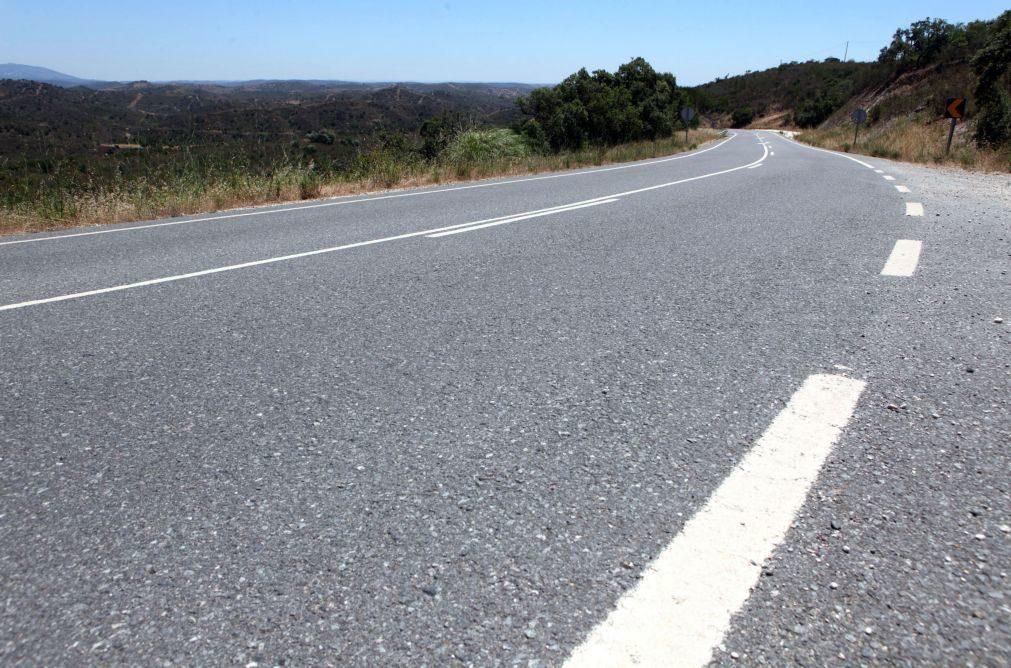 Infraestruturas de Portugal lança aplicação para reduzir morte de animais nas estradas