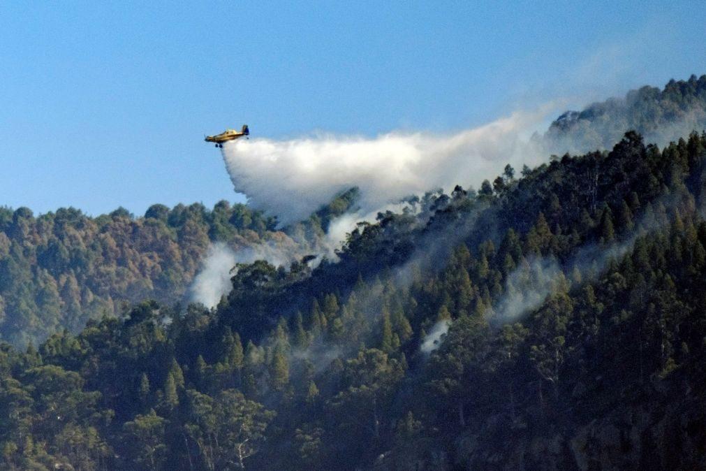 Extinto incêndio florestal que lavrava na Gran Canária há 15 dias