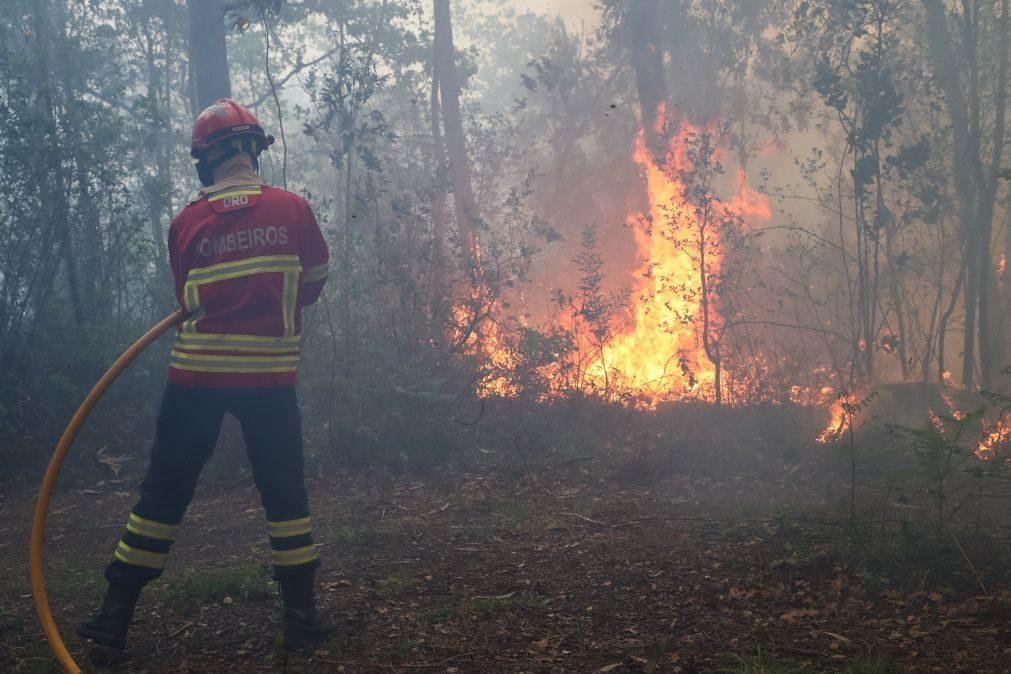 Mondim de Basto: Mais de cem bombeiros e quatro meios aéreos combatem chamas
