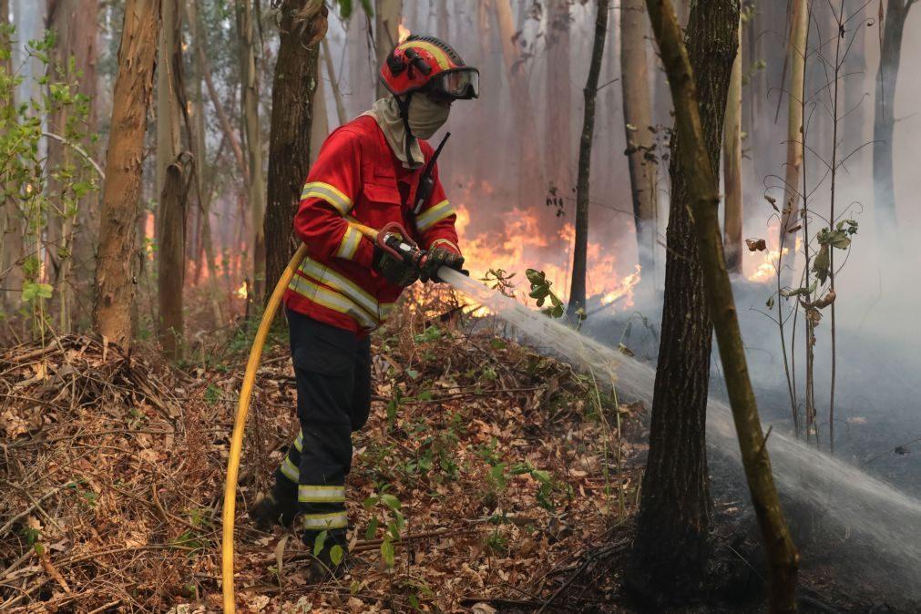GNR deteve duas pessoas pelo crime de incêndio florestal em Albergaria-a-Velha