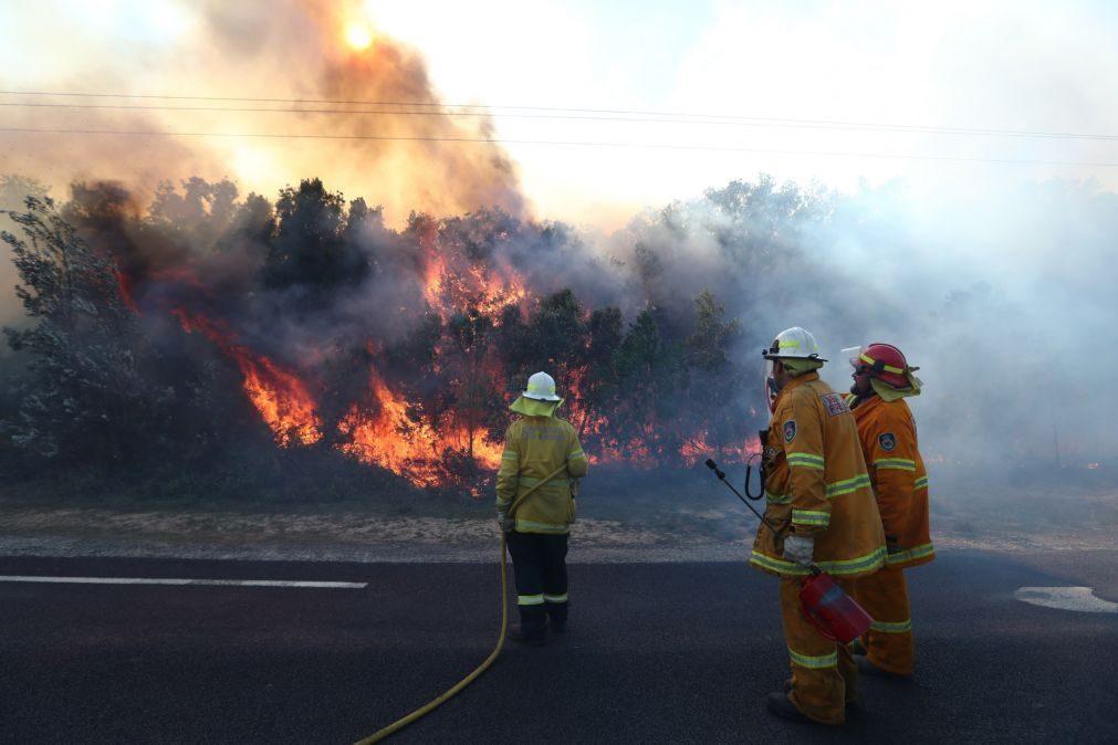 Atenção! Mais de 60 concelhos de nove distritos em risco máximo de incêndio