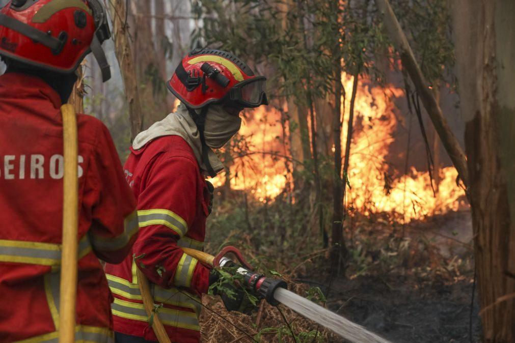 Incêndio: Três meios aéreos e mais de 158 operacionais combatem fogo em Cinfães