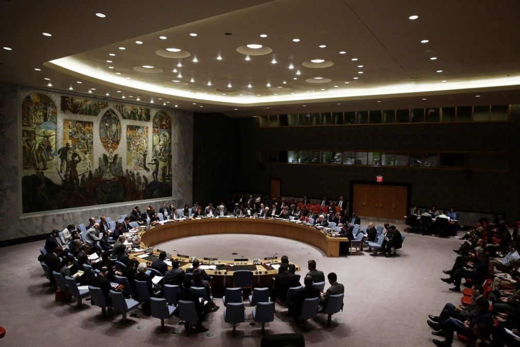 Conselho de Segurança discute quarta-feira ofensiva turca na Síria - diplomatas
