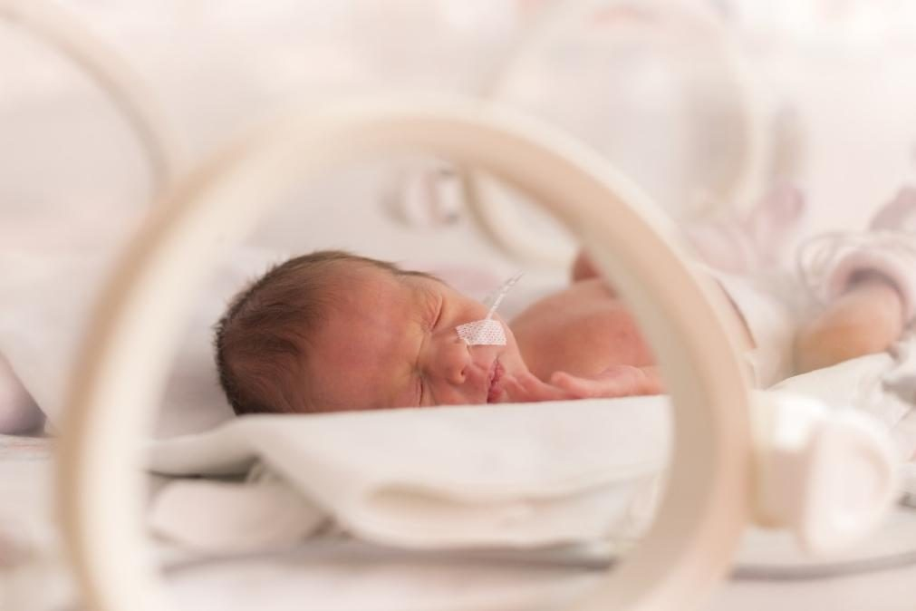 Pais da recém-nascida que caiu de incubadora pedem indemnização ao hospital