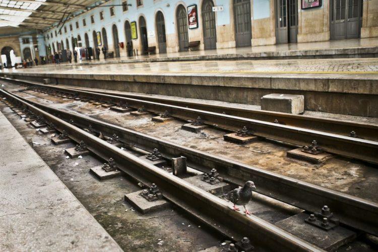 Circulação na linha do Norte interrompida devido a acidente com uma pessoa