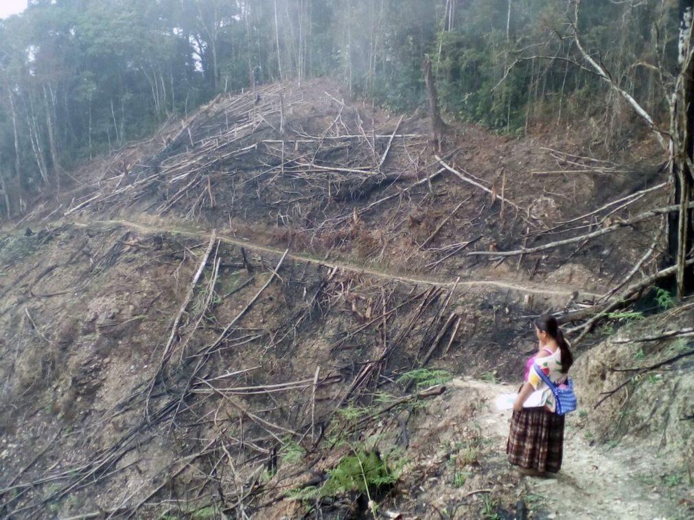 Guatemala declara 'estado de calamidade' devido a incêndios