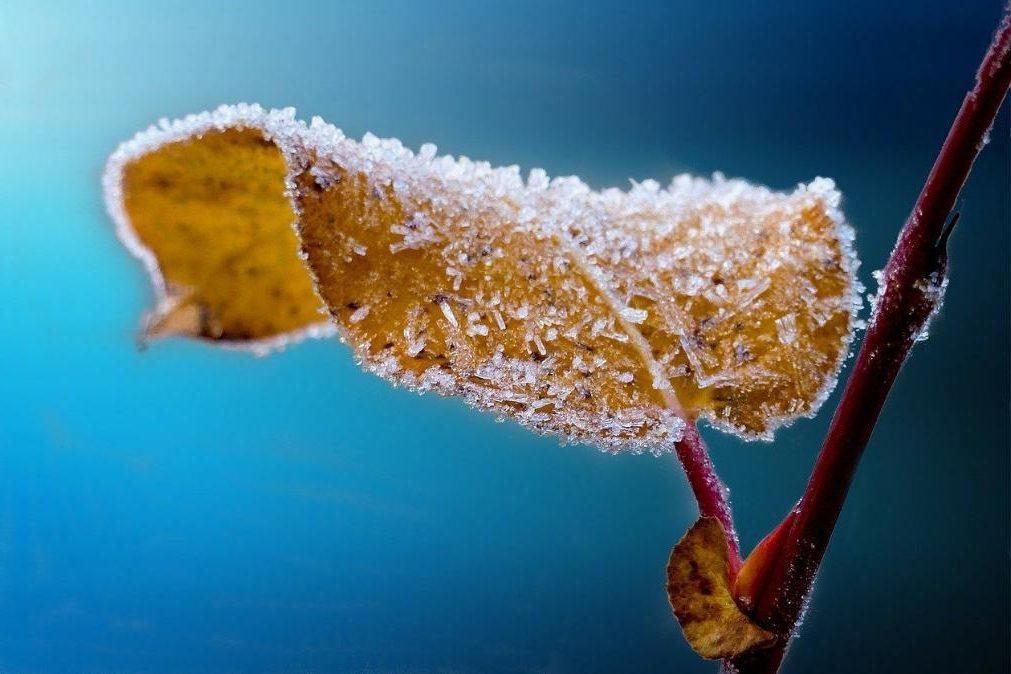 Meteorologia: O tempo para segunda-feira, 6 de janeiro