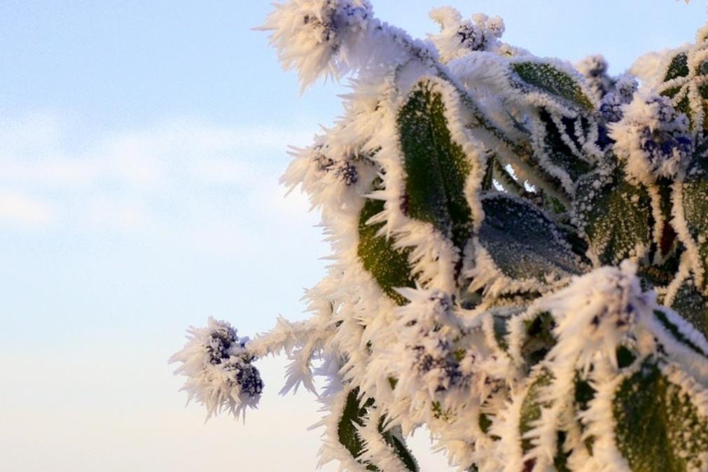 Meteorologia: O tempo para este domingo, 12 de janeiro