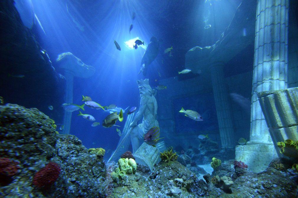 Legos e animais marinhos juntos no Sea Life