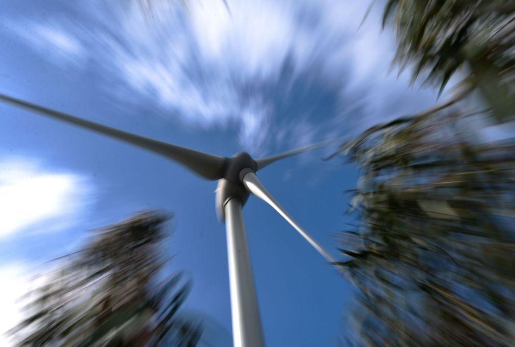 Portugal liderou consumo de eletricidade de origem eólica no domingo