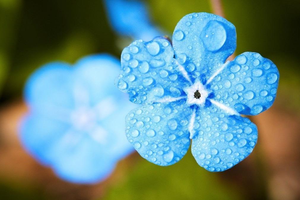 Meteorologia: Previsão do tempo para sábado, 4 de abril