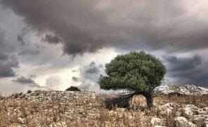 Meteorologia: Previsão do tempo para quinta-feira, 15 de outubro