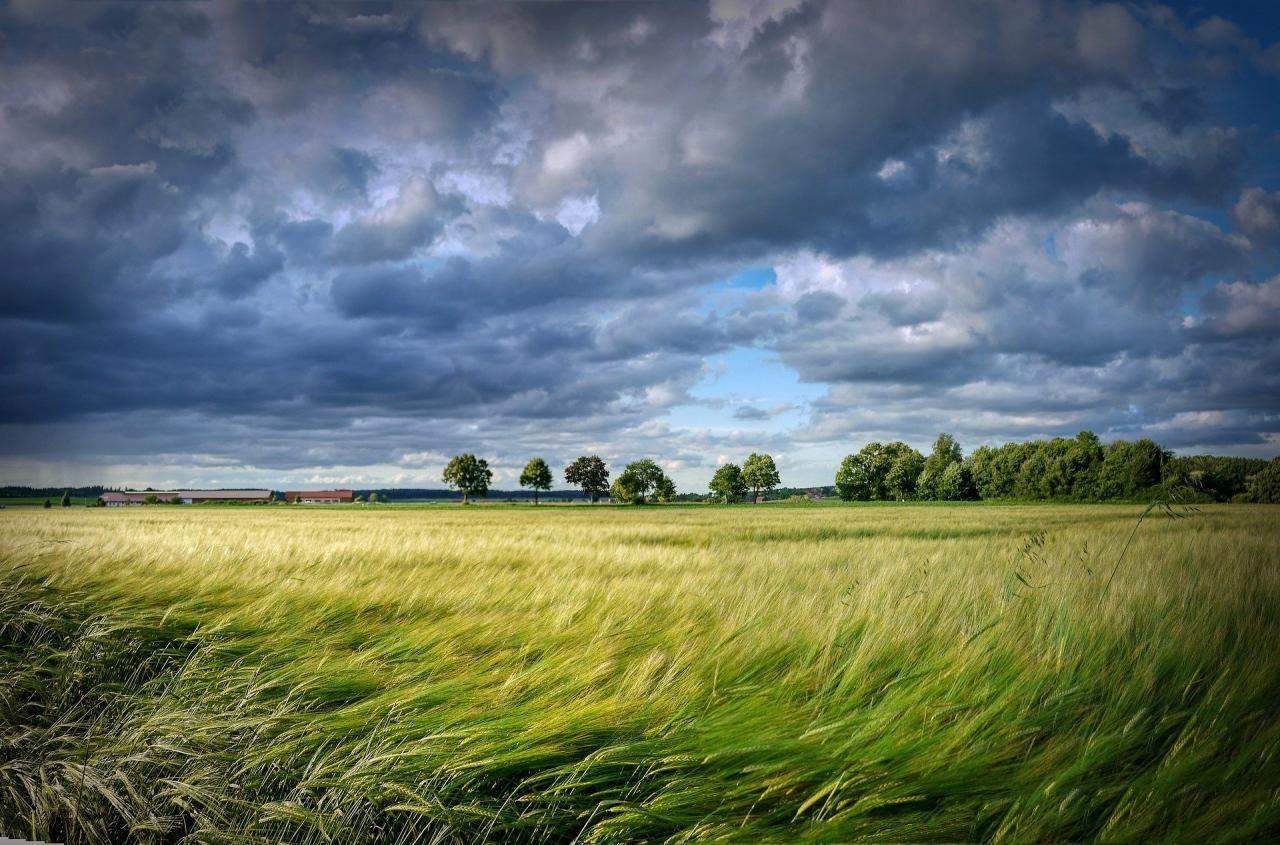 Meteorologia: Previsão do tempo para segunda-feira, 4 de maio