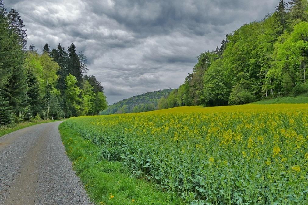 Meteorologia: Previsão do tempo para segunda-feira, 1 de junho