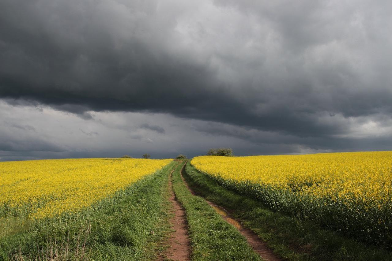 Meteorologia: Previsão do tempo para terça-feira, 2 de junho