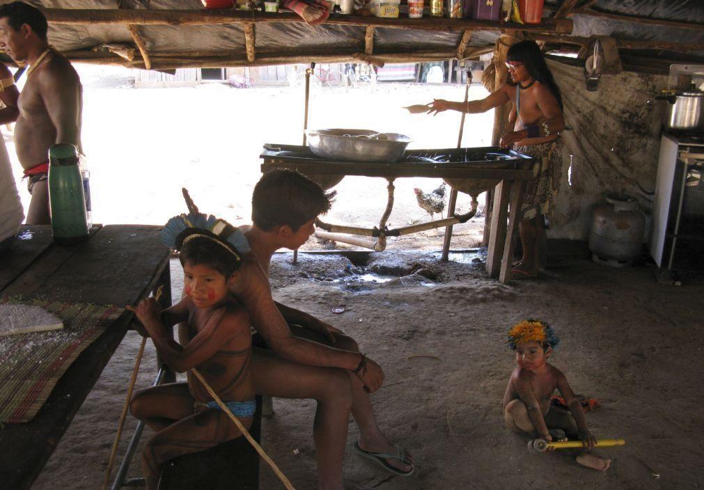 Covid-19: Floresta amazónica tem mais de cinco mil indígenas infetados