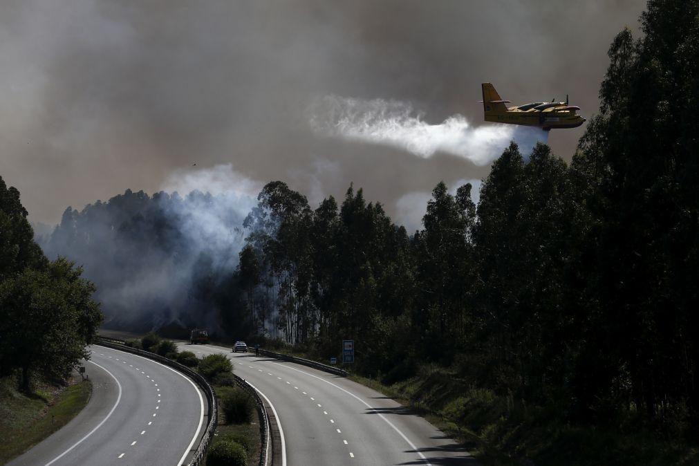 Incêndios: Todos os 60 meios aéreos disponíveis, anuncia governo