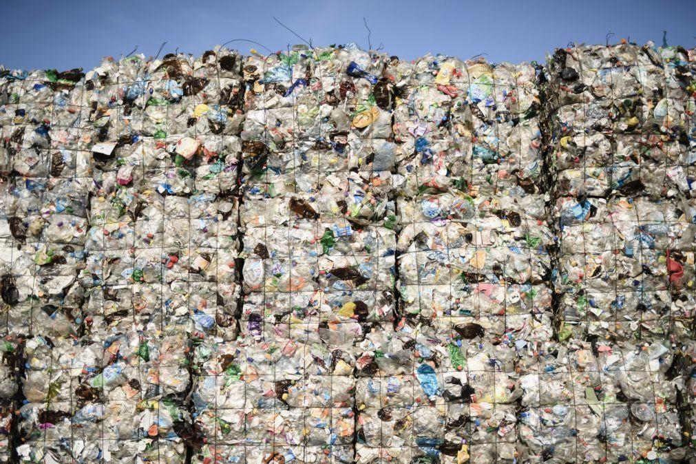 Projeto da Universidade de Coimbra sobre reciclagem premiada em concurso apoiado pela ONU