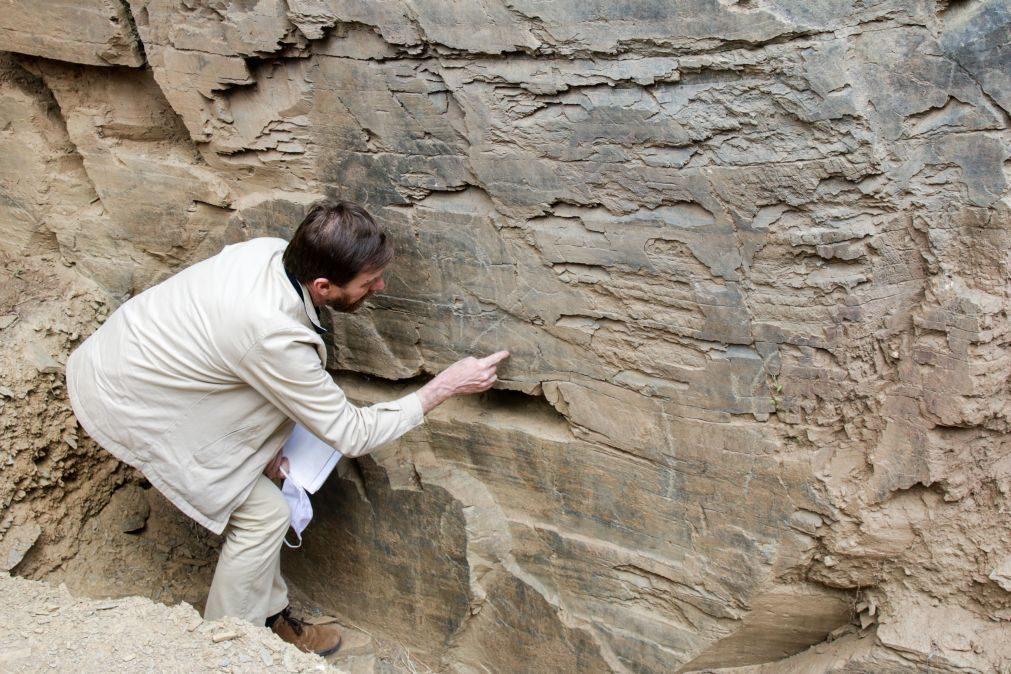 REPORTAGEM: Retomadas escavações no sítio do Fariseu no Parque Arqueológico do Vale do Côa