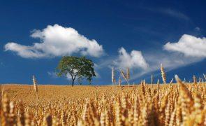 Meteorologia: Previsão do tempo para sexta-feira, 9 de outubro